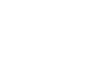 Bitcoin Cash Logo white